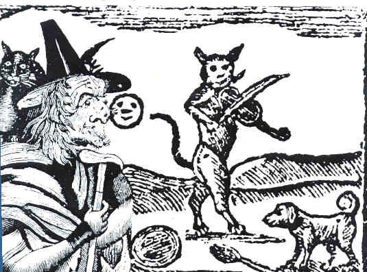 strega gatto-2