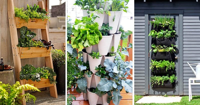 vertical-vegetable-garden-100217-1007-01-2
