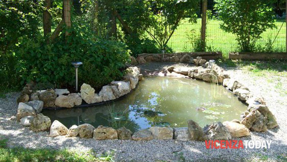laghetto giardino-2