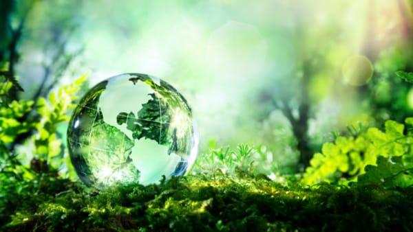 """""""Green Economy e Valore di Mercato"""" a Schio"""