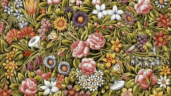 """""""Flora Segreta"""": fiori e piante nei quadri, ceramiche e stampe a Bassano del Grappa"""