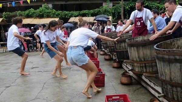 Festa dell'Uva a Villa Angarano: buon cibo, vino, musica, divertimento