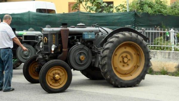 trattorada giavenale-2
