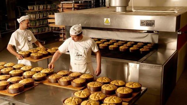 Le Fabbriche del Gusto: degustazioni delle eccellenze vicentine