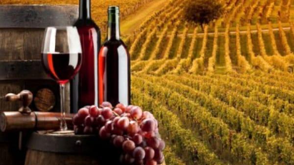 66° Festival del Vino a Breganze: degustazioni, mercatini e musica