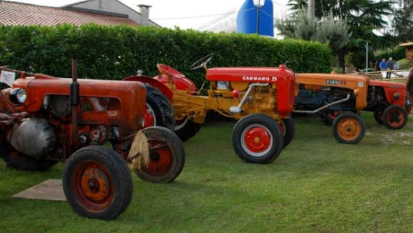 mostra esposizione trattori d'epoca fiera arti e mestieri-2