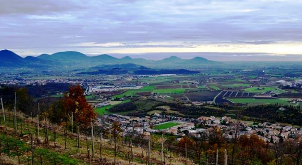 Escursione sui Colli Berici (immagini di archivio)