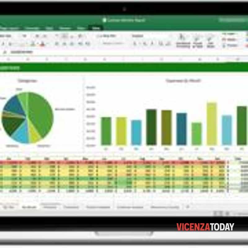 Excel (immagini di archivio)