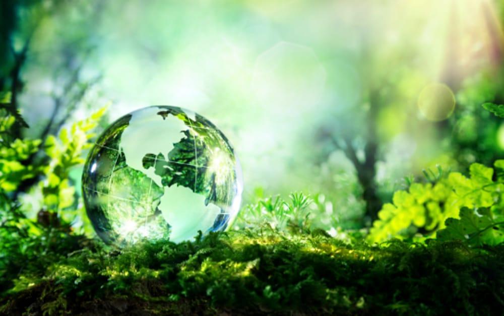 """""""Green Economy"""" (immagini di archivio)"""