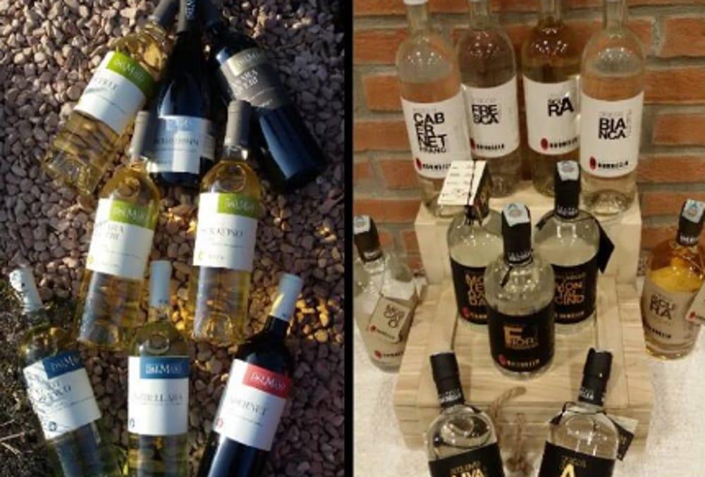 Grappe e vino (foto facebook)