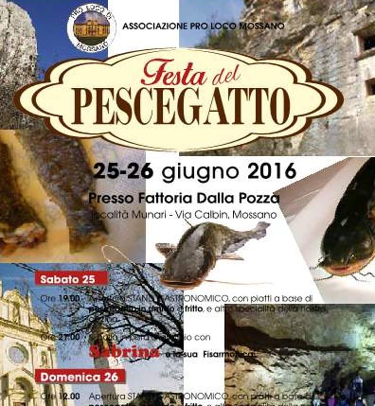 """Locandina """"Festa del Pescegatto"""" (foto facebook)"""