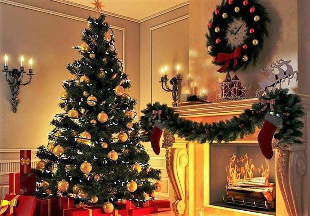 Albero Di Natale Vero.Albero Di Natale Vero O Sintetico