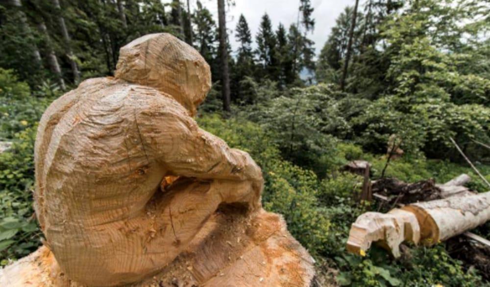 """Contest SelvArt"""": simposio di scultura in legno (immagini di archivio)"""